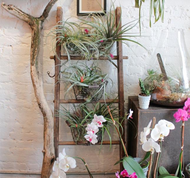 Escada ladder flores decoreba-design